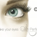 Lash and Brow Offers